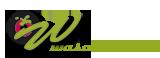 LogoWasabi4